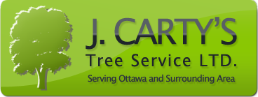J Carty Tree Removal